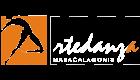 Artedanza Maracalagonis